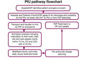 piu Pathway flowchart